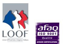 LOOF Afaq ISO 9001